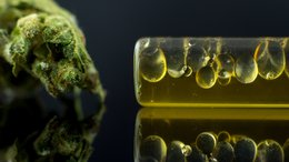 CPH Set to Expand cannaQIX® Product Line After Major Technological Breakthrough