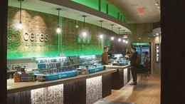 CPH deliver Financials and Confirms US Cannabis Market Entry